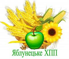 Яблунецьке ХПП