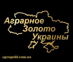 Аграрное Золото Украины