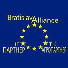 Братислава Альянс