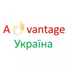 Адвантаж Украина