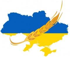 """""""Компания """"Колос Украины"""""""