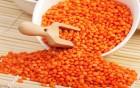 Красная чечевица на экспорт