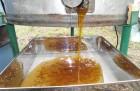 Продам меда: кориандр+акация, разнотравье+акация, рапс+акация