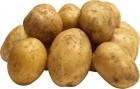 Продам картоплю, домашня, заготівельник