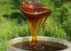 Продам свіжо викачаний мед врожаю 2017 року -  гречка + різнотрав'я.