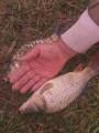 Продам зарибок річкової риби