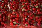 Боксы, лоток под ягоды (пинетка)