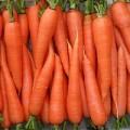 Семена моркови весовые и пакетированные