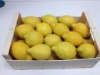 Лимоны. Прямые поставки из Испании