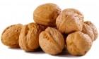Научу бизнесу грецкий орех. Быстро и качественно!