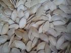 Продам гарбузове насіння (семочку тикви) сорт «Українка многоплідна»