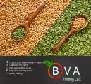 Закупаем желтый зеленый горох нового урожая 2016 года на экспорт