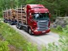 Надаємо послуги із перевезення лісу лісовозом