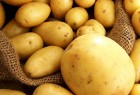 Интересует Картофель