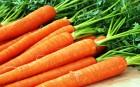 Интересует Морковь