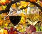 Вино домашнее красное и белое
