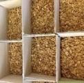Оптовая реализация ядра ореха грецкого