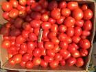 Продам помидоры сливка