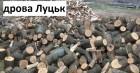Продаємо дрова з дуба, граба, ясена твердих порід Луцьк