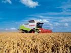 Компания  предлагает услуги по уборке урожая2017 в херсонской обл.