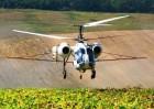 Десикация подсолнечника вертолетом и кукурузником