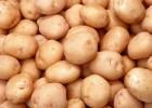 Куплю картоплю, гуртом від 10 тонн