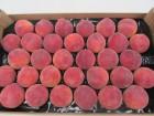 Персик от производителя. Испания