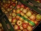 яблоко √ала, ƒжонаголд