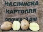 Элитный семенной картофель от IPM Potato