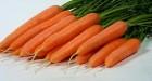 """Продається оптом морква, сорт """"Престо"""""""