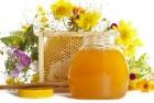 Компания-экспортёр закупает мёд без антибиотика