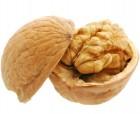 «акупаем бойный грецкий орех в скорлупе нового урожа¤