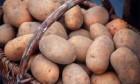 Куплю оптом картошку
