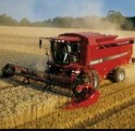 Услуги по уборке зернових