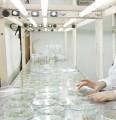 Лабораторный анализ посевного материала