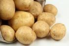 Продам картошку. Много!