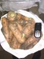 Продам Морковь первого сорта