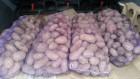 Продам картофель белый и розовый