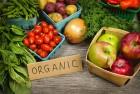 Органическое удобрение, иммунопротектор, антиоксидант,  проверенный вр