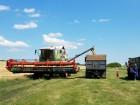 Продам действующее фермерское хозяйство