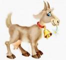 ћ¤со коз