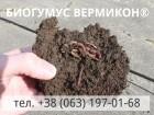 Универсальное органическое удобрение - Биогумус ВЕРМИКОН®