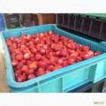 Підприємство купляє полуницю