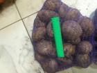 Продаем картофель оптом в Ростове