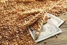 Купуємо зернові