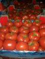 """Продам помидор турецкий сорта """" Коктейль"""" и """" Хвост"""