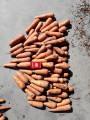 Продам морковь сорт Боливар
