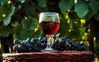 Вино домашнє(ізабелла банська)