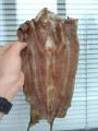 Жива  риба Сом Продам