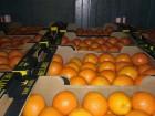Апельсины оптом Греция